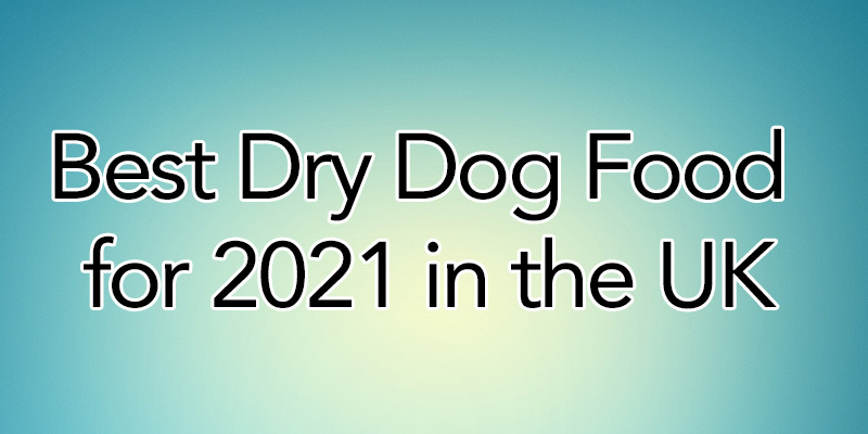 Best Dry Dog Food for 2021 in the UK