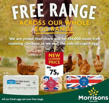 0001 morrisons%20latest%20offers%2020%20feb%20 %2022%20mar%202020
